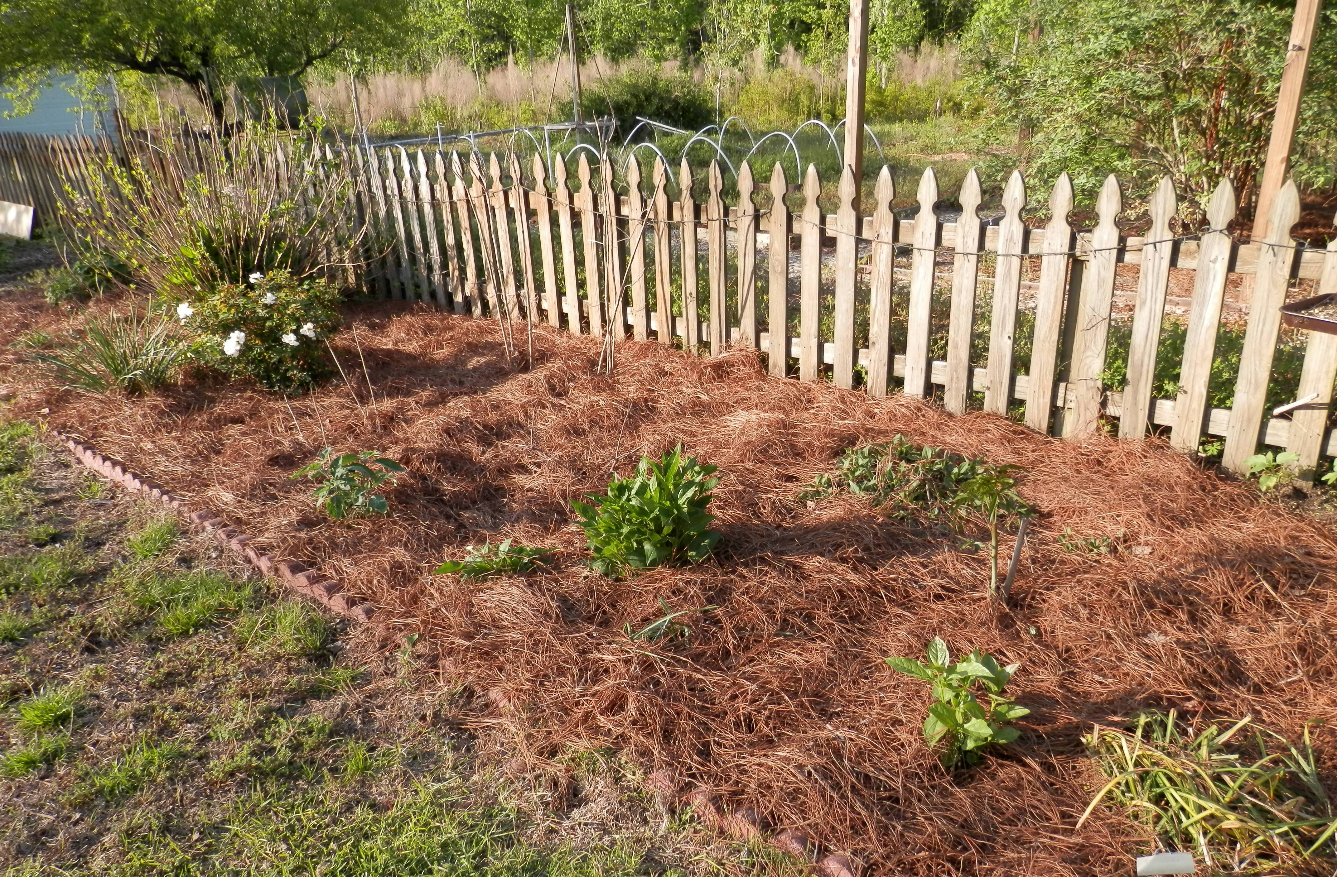 What Ingredients Create Our Spiritual Mulch I Was