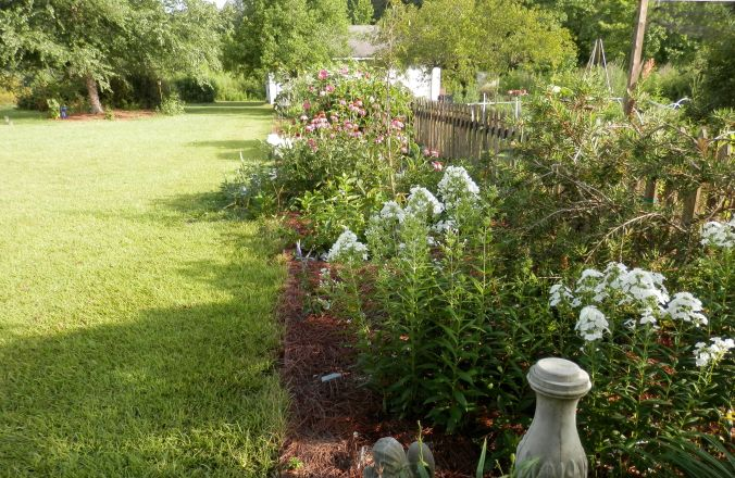 The English Garden Look - Getting Closer